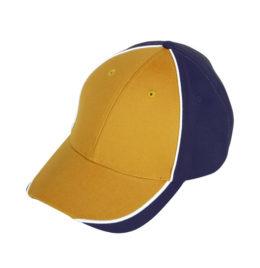 Navy Gold Cap